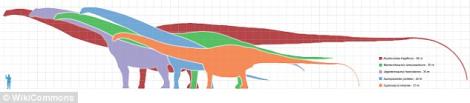 LargestdinosaurArgentina