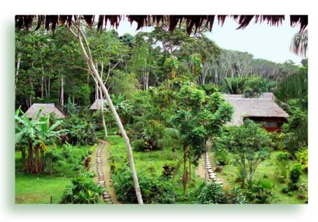 wasai-tambopata-eco-lodge