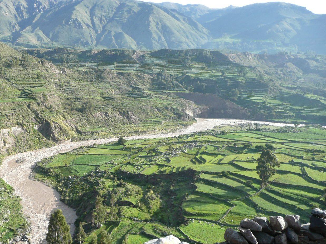 Colca-Canyon-3_Peru