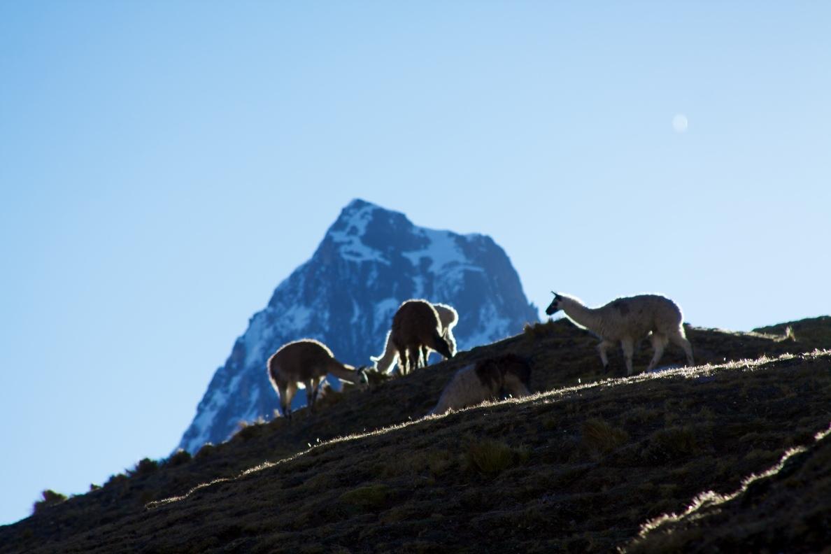Peru – LaresTrek.