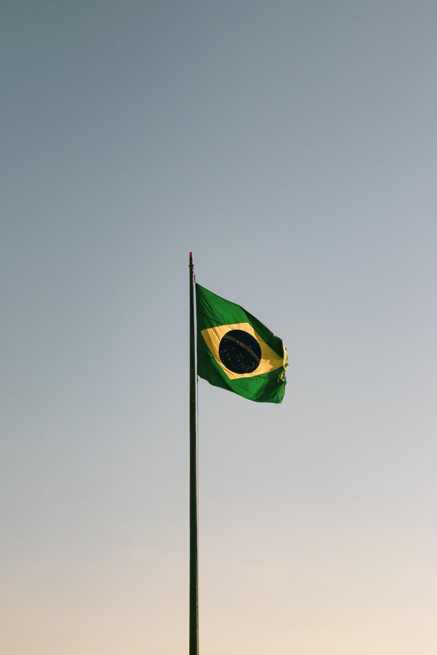 """Amazonasabholzung 2019 um 85 Prozent gestiegen  —  Brasilien Abholzung  —  """"Geteilt von Tagesschau.de"""""""