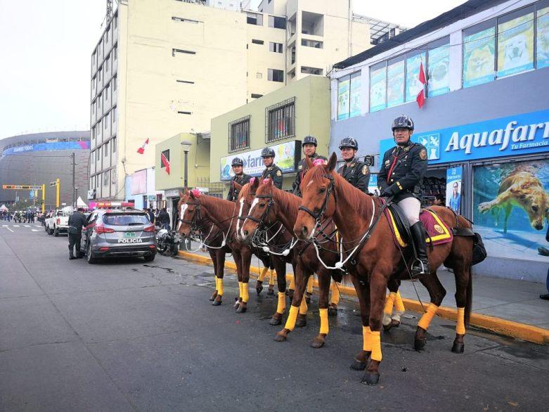 Panamerikanische_Spiele_Polizeipferde