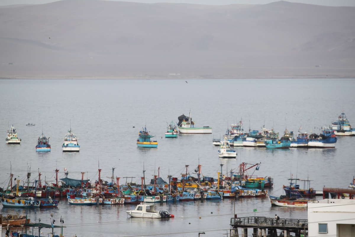 Paracas (Peru Pazifikküste) — Travelinglight