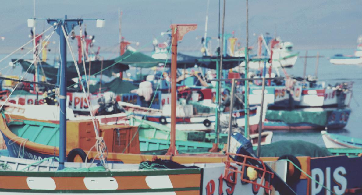 Peru Fischerboote Paracas