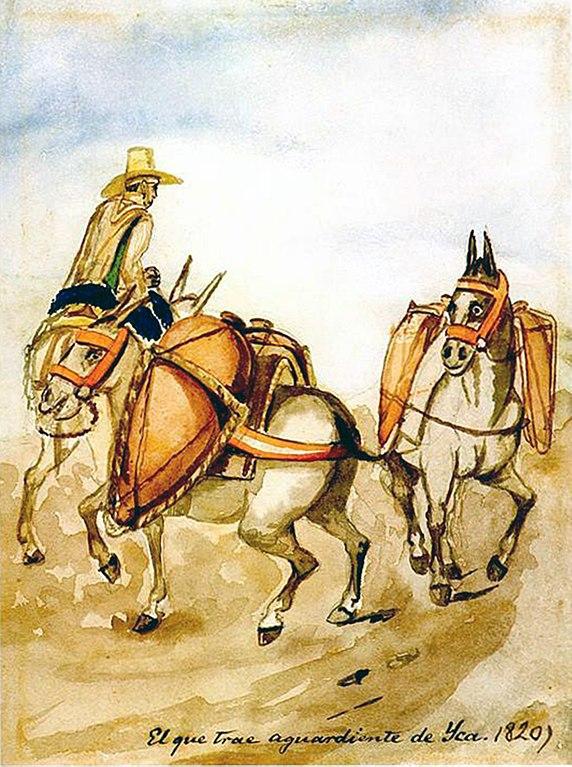 Historischer Pisco Transport bei Ica