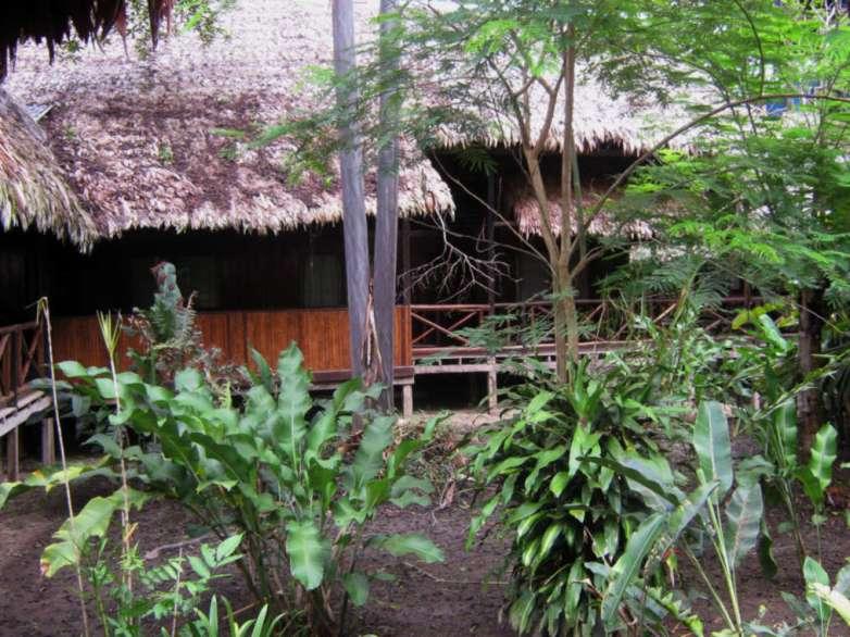 Helicona Amazon River Lodge.
